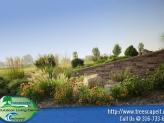 wall-slope-landscape